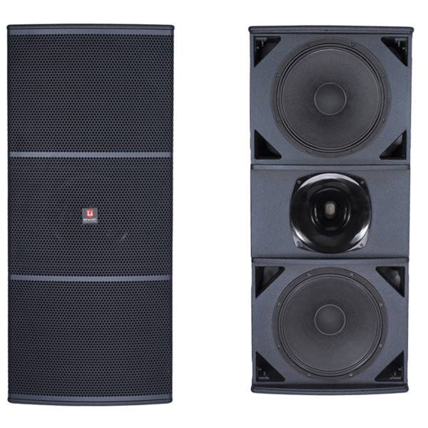 Dual 15'' Pa speaker Sound Show Products for OutDoor Audio Concerts