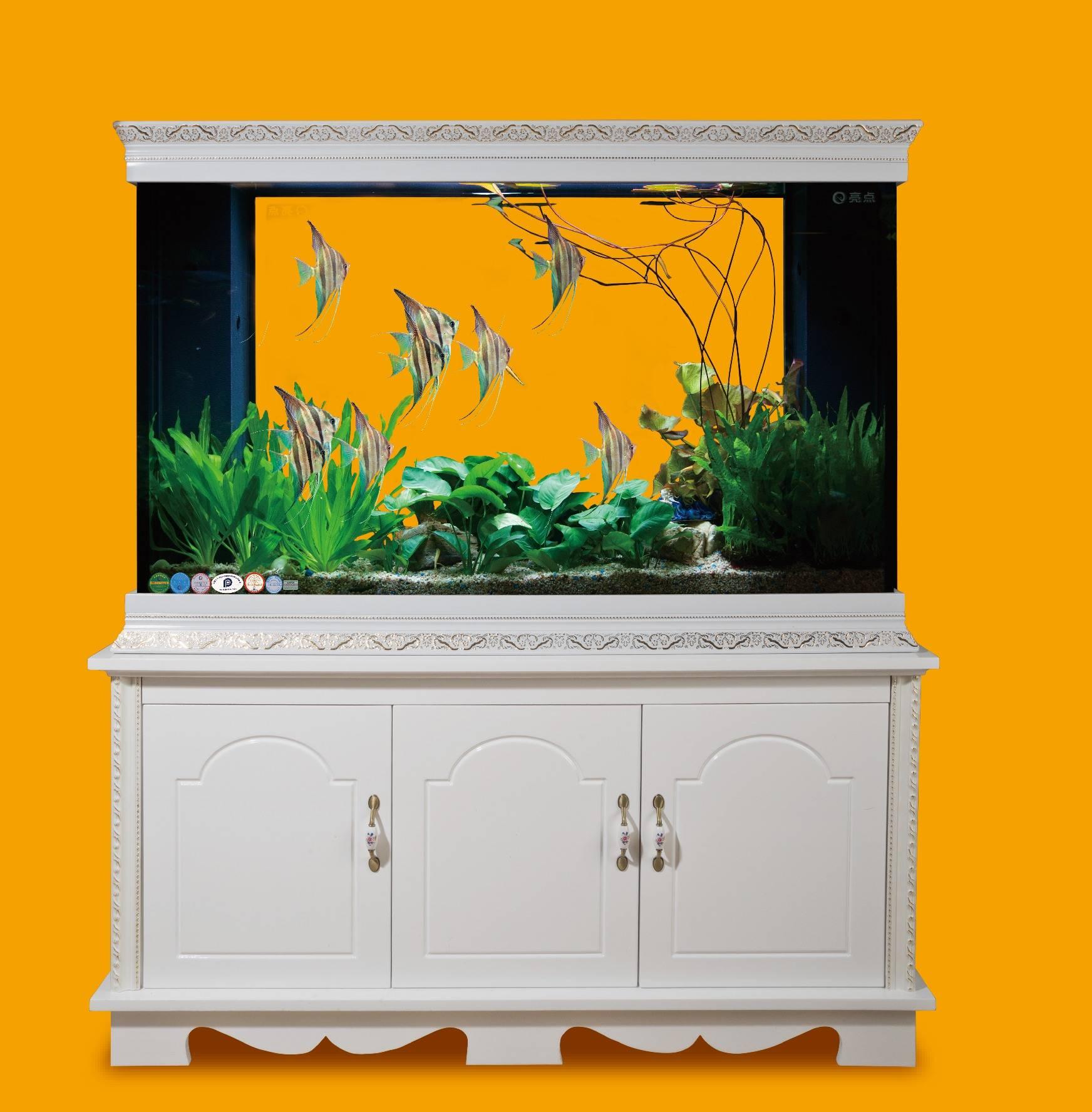 Monterey pine 3-view cabinet aquarium