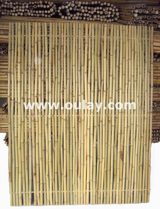 cheap nature and high quality bamboo fence