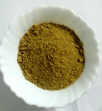Premium Quality Coriander Powder