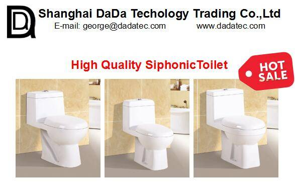 China reliable quality control service QC service for white ceramic bathroom fixture bathroom access