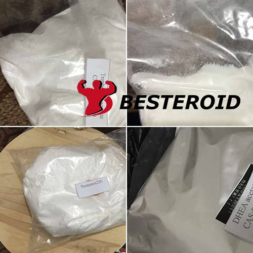 High quality steroid powder Androstenedione with good price CAS 63-05-8