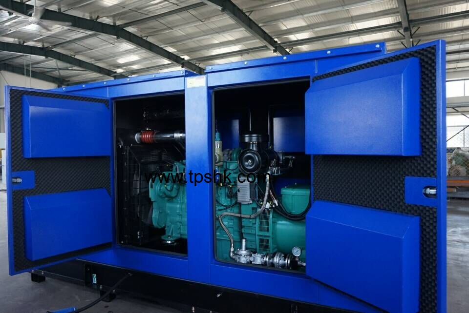 Cummins LPG Generator 100KVA TCM100G