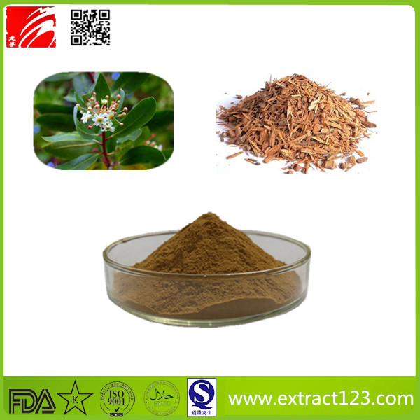 High Quality Catuaba Extract Powder