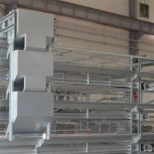 H type poultry cage system for broiler