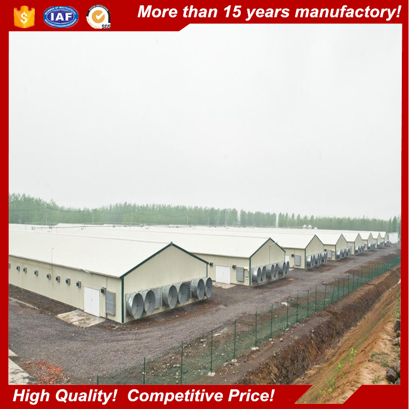 Professional Design Automatic Commerical Prefabricated Steel Structure Poultry Chicken House