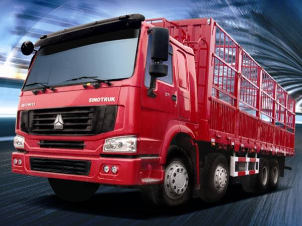 HOWO 8X4 Cargo Truck with Flat Cab 371 HP