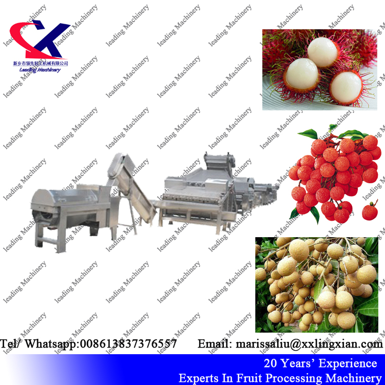 High Tech Lychee(litchi) juice wine processing equipment 2t/h lychee peeler and pitter