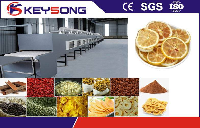 Commercial Food Drying Equipment Tunnel Microwave Dehydration , Vegetable dryer machine