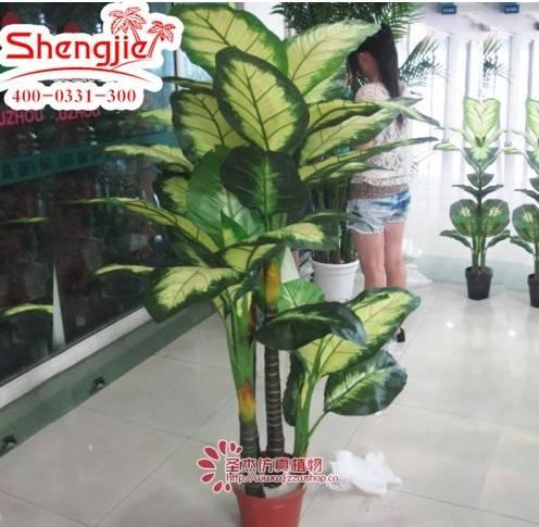 Hot Sell artificial the Rohdea japonica bonsai