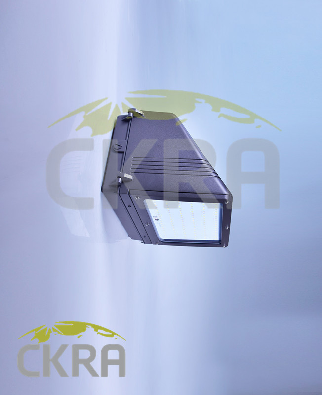 LED WallPack Light