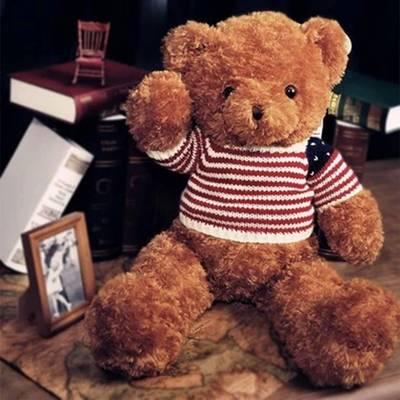 plush bear with cloth