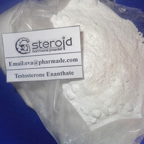 Testosterone Enanthate 500mg/ml Oil Delatestryl Injection Steroid