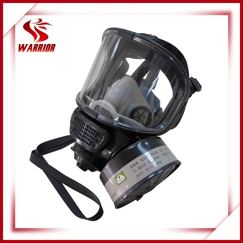 Respiratory protection gas mask