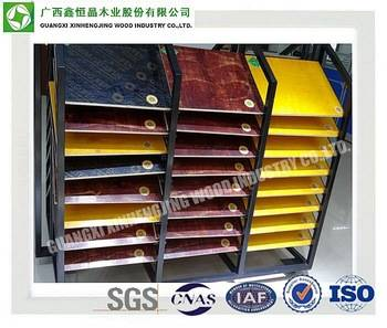 China Professional Plywood Manufacturer 1220*2440mm Plywood for Construction