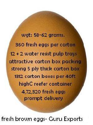 EXPORTERS OF BROWNE SHELL EGGS