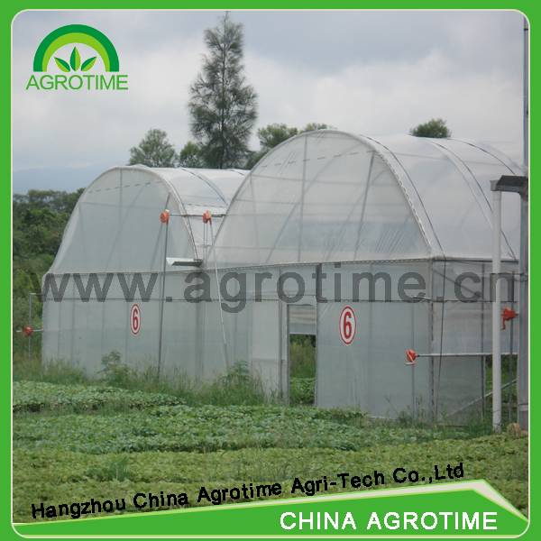 Multi-span Greenhouse for agricultural commercial tunnel greenhouse used for sale with film plastic