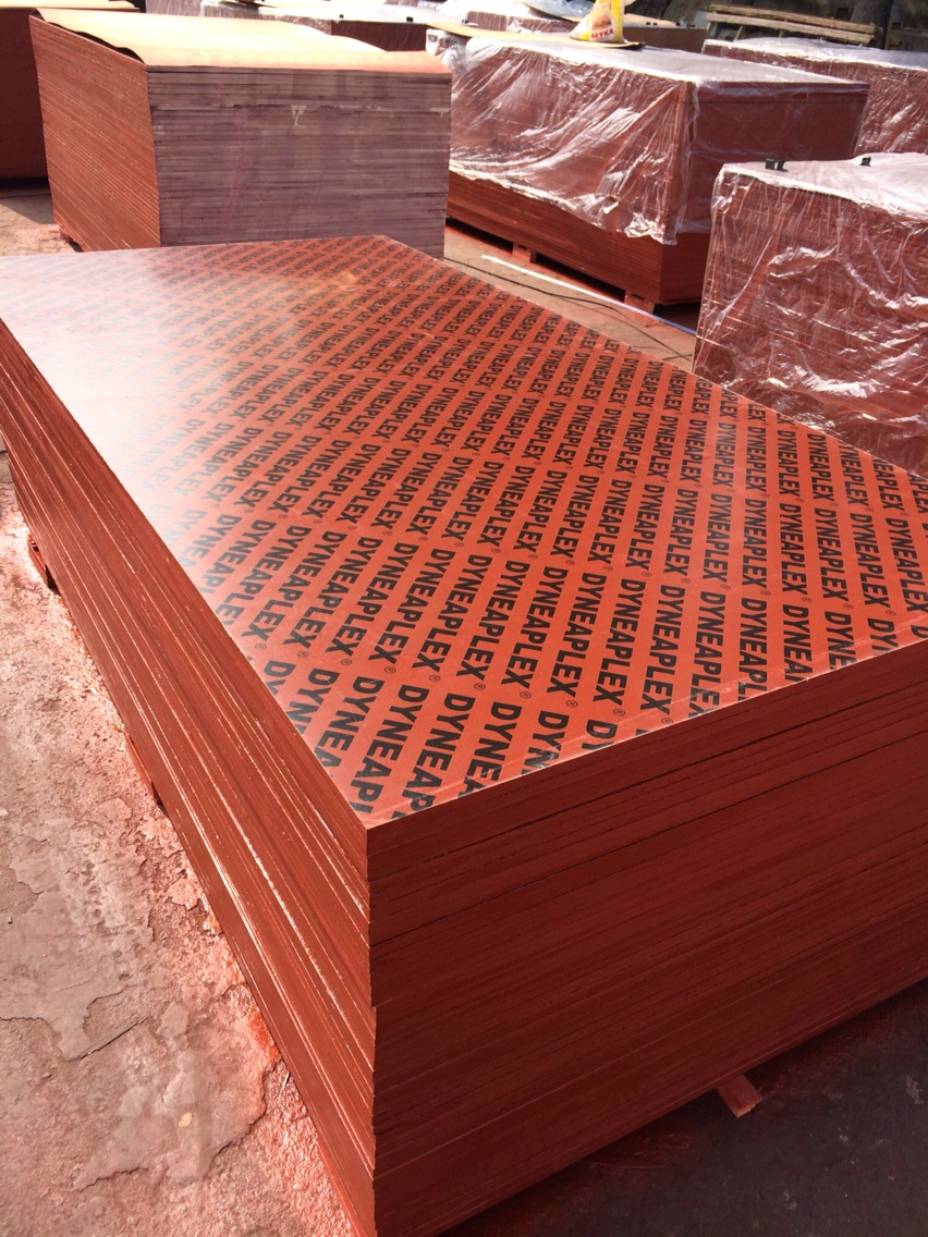 Construction shuttering Plywood for USA and Euro
