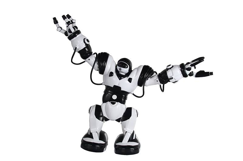intellgent remote control robot toy