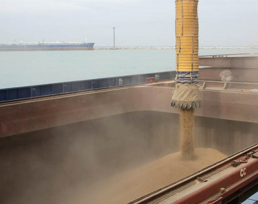 Feed Wheat FOB ports of Russia