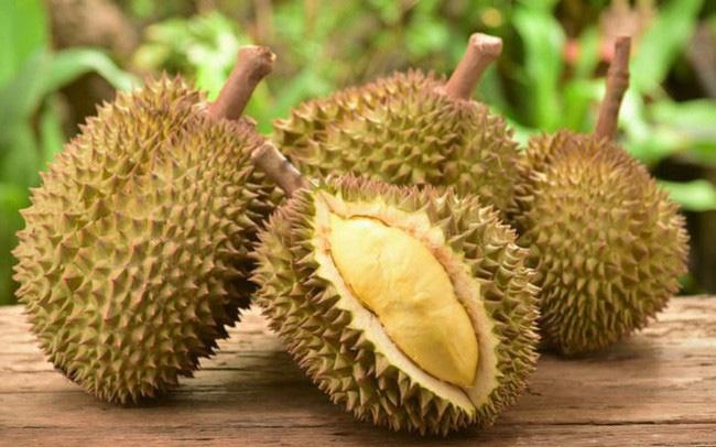 Fresh Durian from Vietnam Premium Grade