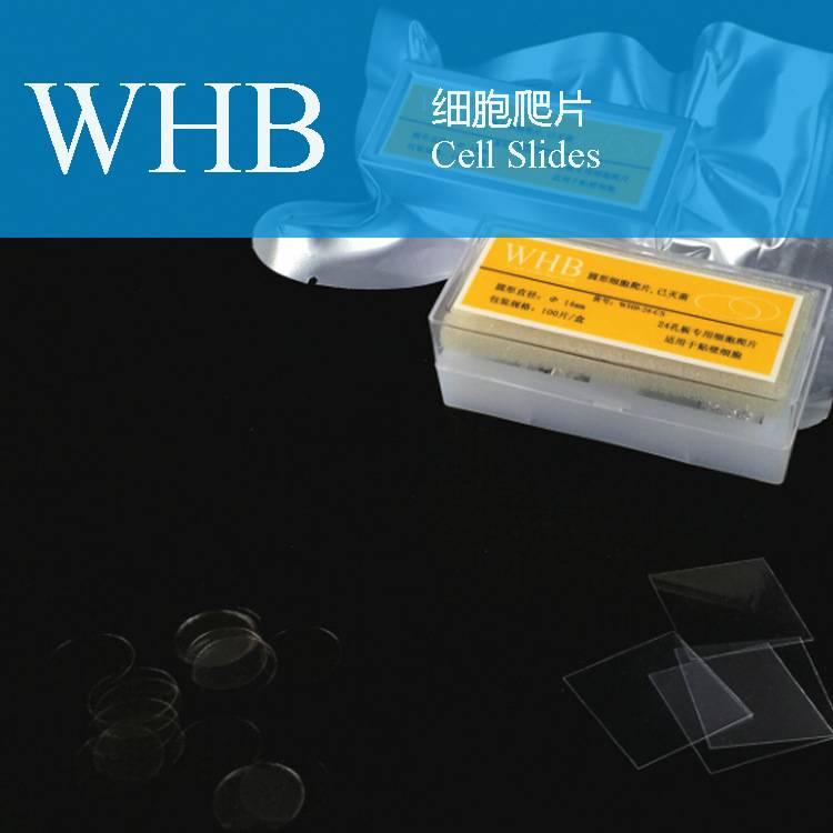 Tc Treatment Cover Glass