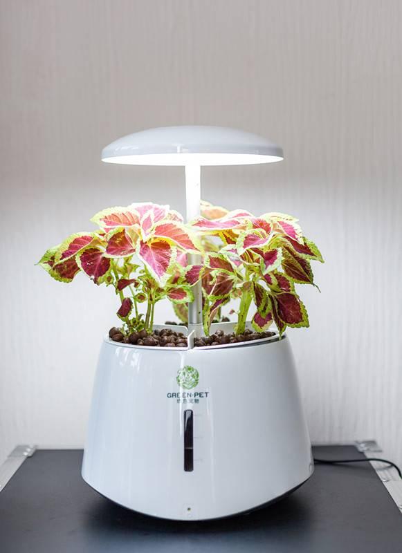 China hydroponics equipment high quality