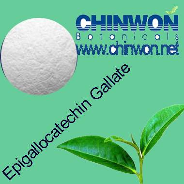 Epigallocatechin gallate