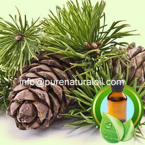 100% Pure Cedarwood Essential Oil