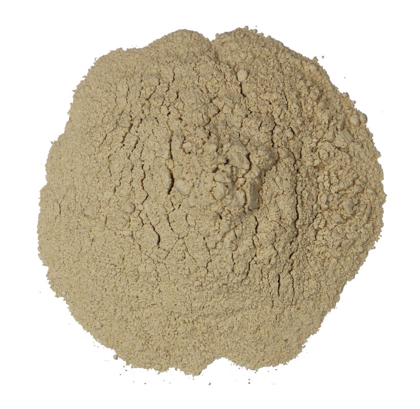 Ginsenoside RG3 Natural Plant Extracts HPLC 15% 50% 98% 14197-60-5