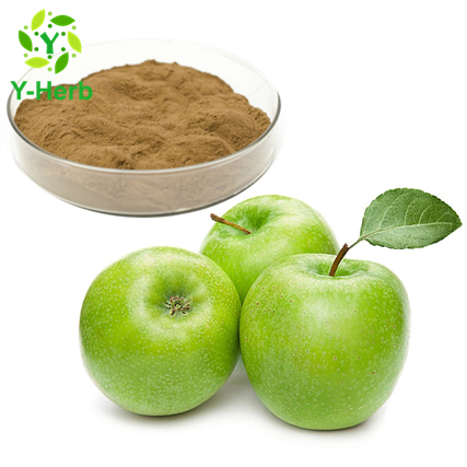 Polyphenol Unripe Green Apple Extract Titratable Acid Apple Cider Vinegar Powder