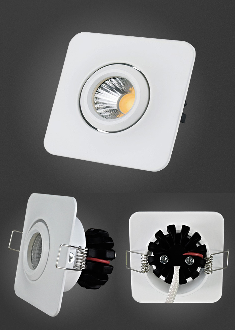 Aluminum Alloy Die Casting COB 3W LED Ceiling Light Fixture
