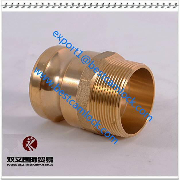 High Quality Brass cam-lock & groove fittings TypeF