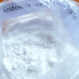 Testosterone Enanthate steroids raw powder