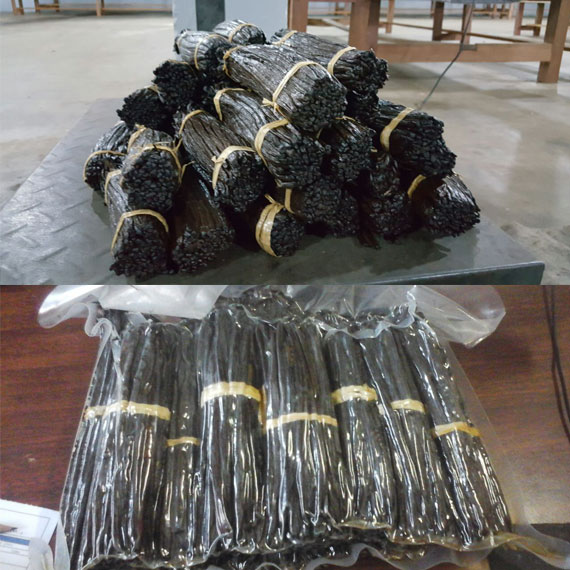 Vanilla Beans Available at good prices