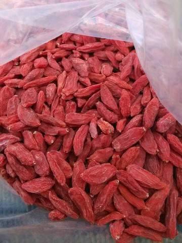 Good quality Ningxia dried goji berries