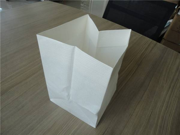Chinese new kind kraft paper bags