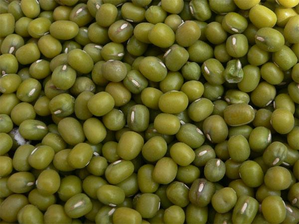 Size 2.5mm-5.0mm Green Mung Bean 2016 year