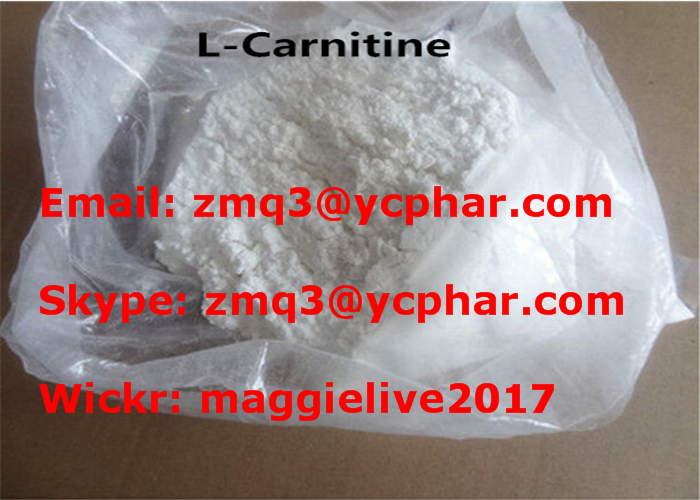 L - Carnitine Medicine Raw Material Fat Loss Hormones Muscle Mass Bodybuilding Supplement