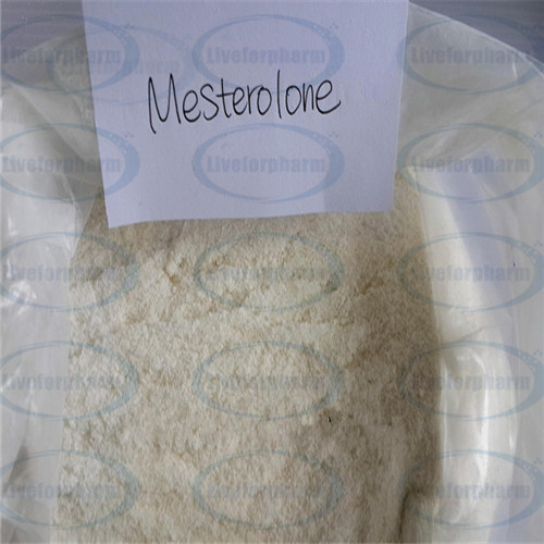 Strongest Cutting Cycle Testosterone Anabolic Steroid Proviron Mesterolone CAS1424-00-6