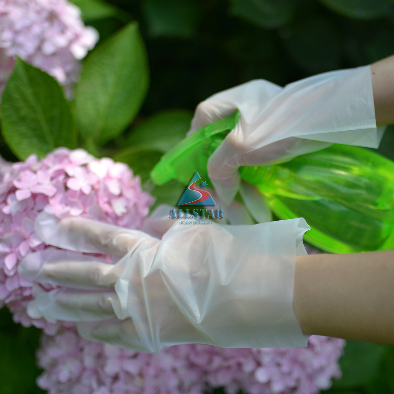 Disposable CPE Glove for food