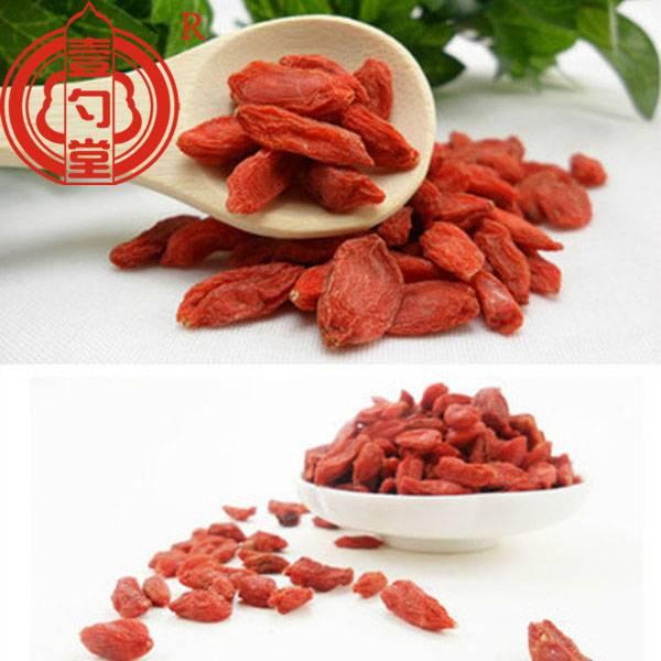 Organic dried ningxia goji berries