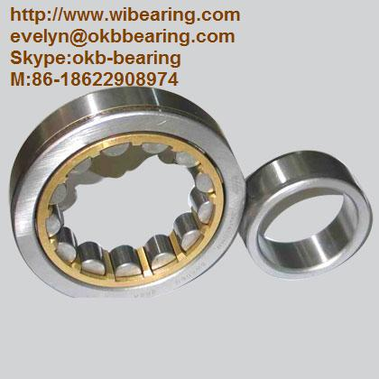FAG NU220E Bearing,NSK NU220E