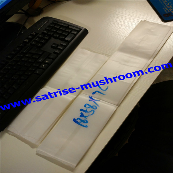 Best selling stable quality affordable oyster mushroom grow bags