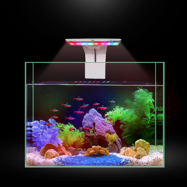 Aquarium LED Blue Light Freshwater Grow Light 5W Colorful