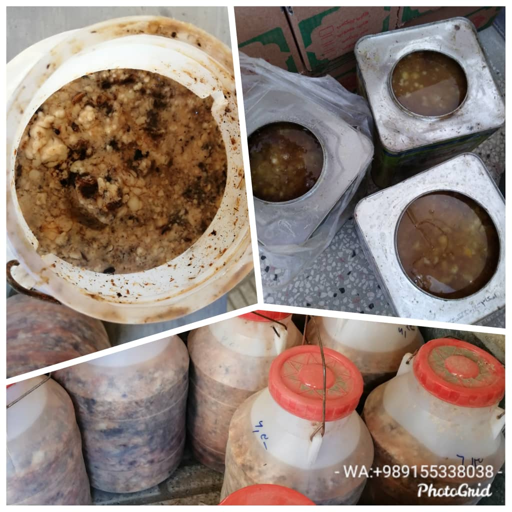 Wholesale: Assafoetida, Galbanum, Ammoniacum, Tragacanth