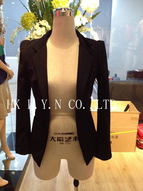 Professional career women suits 2013
