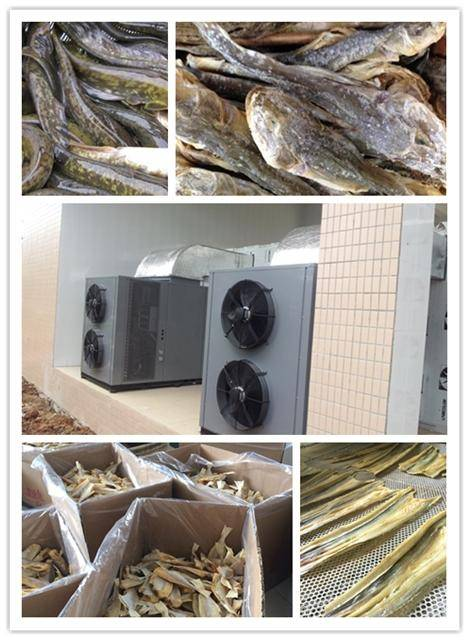 catfish drying machine