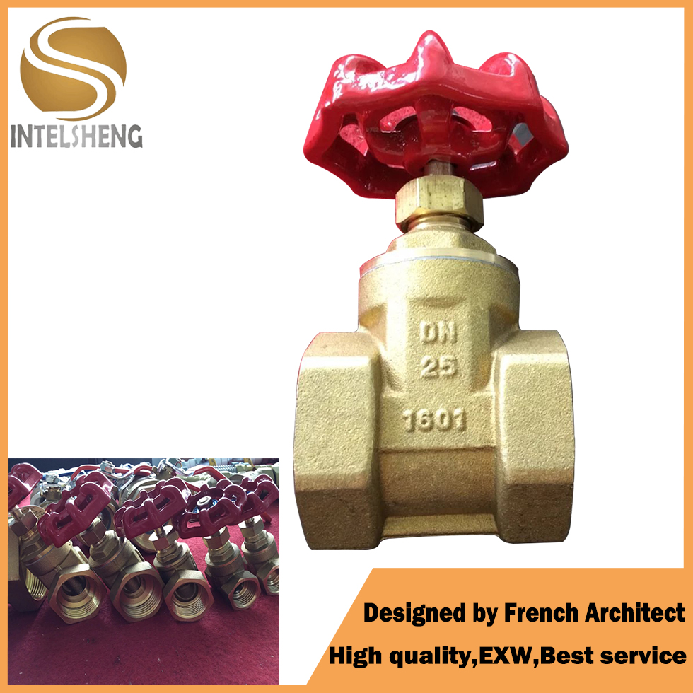 High Quality Brass Valves/control valves/brass gate valve in China