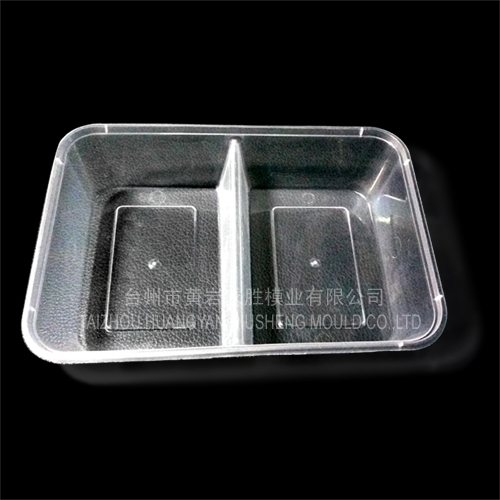 PP 2 grid disposable fastfood boxes container plastic mould
